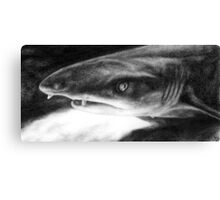 Sarcastic Shark Canvas Print