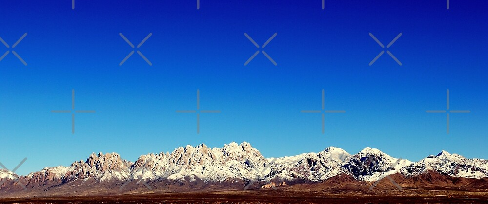 Organ Mountains by nooley17