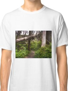 Talk a Walk Under the Tree Classic T-Shirt