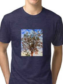 Autumn colours Tri-blend T-Shirt