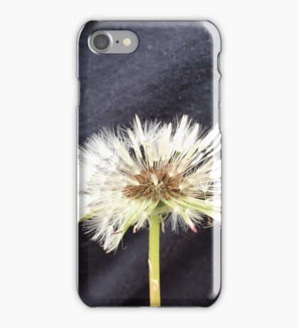 Wet Dandelion Fluff iPhone Case/Skin