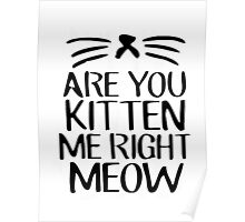 Are You Kitten Me Right Meow Poster