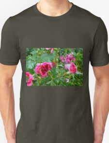 Pink roses in the garden. Unisex T-Shirt