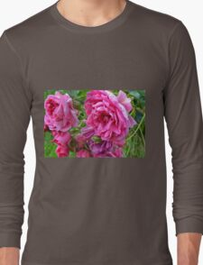 Pink roses in the garden. Long Sleeve T-Shirt