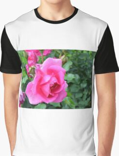 Pink roses in the garden. Graphic T-Shirt