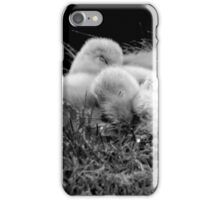 Two little cygnets fast asleep in b/w photograph iPhone Case/Skin