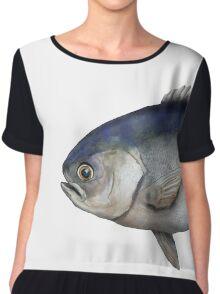 Fish - Blue-eye Trevalla (Hyperoglyphe antarctica) Chiffon Top