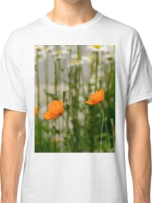 Field poppy  Classic T-Shirt