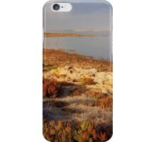 Coorong #5 iPhone Case/Skin