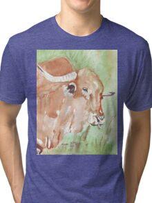 Afrikaner bull Tri-blend T-Shirt