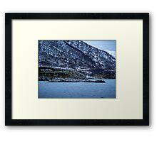 Seabirds Framed Print