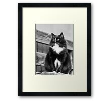 Zoe sitting green -1P- Andre Hote Photography Framed Print