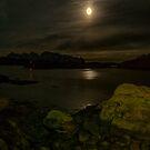 Svolvaer Bay by mlphoto