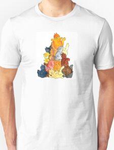 Cat Pyramid T-Shirt