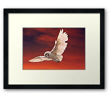 Prey Spotted Framed Print