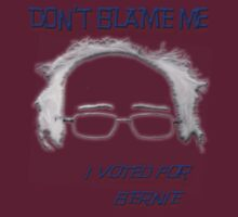 I Voted For Bernie by DJ Florek