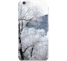 Panoramic Winter iPhone Case/Skin