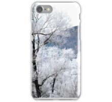 Panoramic Winter iPhone Case/Skin