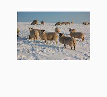 Snowy Sussex Sheep Unisex T-Shirt
