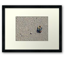 Time to teach your baby how to walk Framed Print