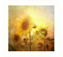 Holding on to the sun Art Print