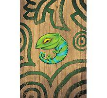Karmeleon Photographic Print