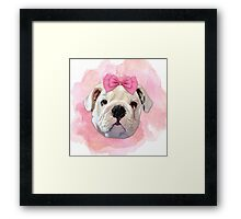 Cute Bulldog Framed Print