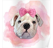 Cute Bulldog Poster