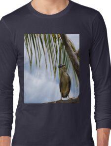 Bird on a tree Long Sleeve T-Shirt