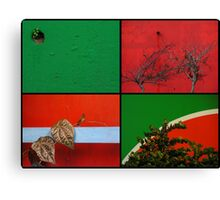 Urban Nature Collage Canvas Print