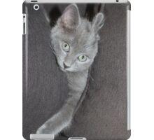 "Charley "" Pillows Are Fun"" iPad Case/Skin"