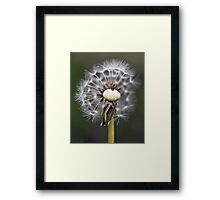 Clocks Framed Print