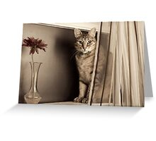 Curtain Call Greeting Card
