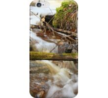 The spring water iPhone Case/Skin