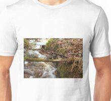The spring water Unisex T-Shirt