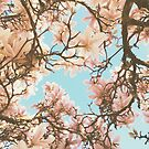 Pink Magnolia by Cassia Beck