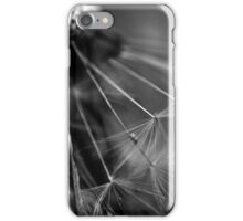 feather of time iPhone Case/Skin