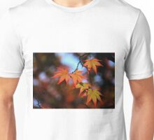 Leaf dance Unisex T-Shirt