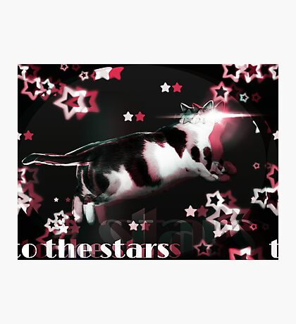 Cat to the Stars!  Photographic Print