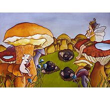 Party on mushroom hill Photographic Print