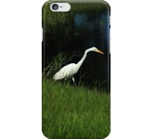 Great Egret Next to a Lake iPhone Case/Skin