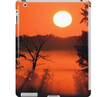 Morning at the Marsh iPad Case/Skin