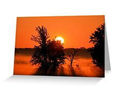 Rays Of Morning Greeting Card