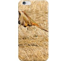 pheasant flight iPhone Case/Skin