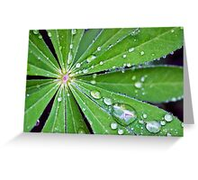 Lupin Leaf Greeting Card