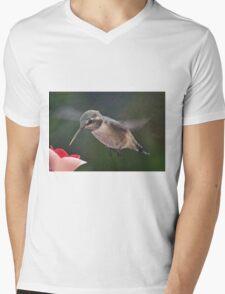 JUVENILE FEMALE ANNA'S IN FLIGHT Mens V-Neck T-Shirt