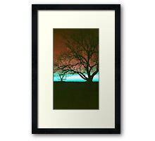 ViewsFromTheAether Tree Silhouette Framed Print