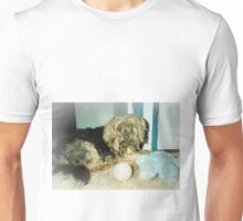 Silky terrier, My toys! Unisex T-Shirt