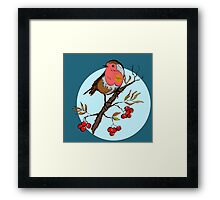 Robin bird illustration print Framed Print