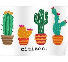 Citizen Cactus Poster